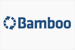 6 Bamboo Beratung in Österreich